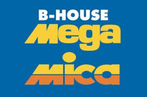 Mega Mica